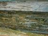 old-wood-arizona-watermark