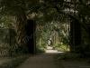 charleston-path-leading-to-white-door