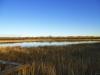 clifford-e-lee-nature-sanctuary