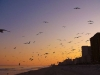 myrtle-beach-evening-dance-p1120642