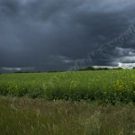 Approaching Storm ....